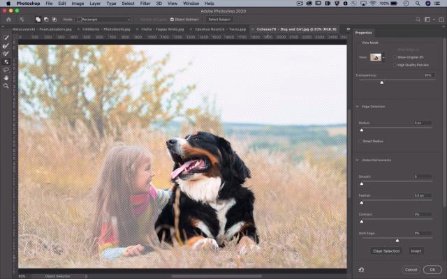 Screen od Adobe Suite software