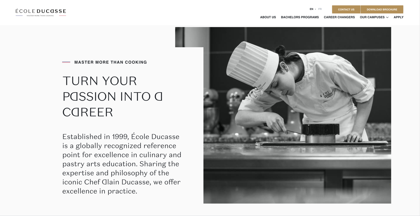 Screen of Ecole Ducasse main page